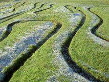 Maze patterns in grass. Abstract patterns formed by maze cut into trurf on frosty sunny morning. St. Catherines Hill Winchester England Stock Photo
