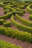 A Maze Stock Images