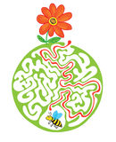 Maze puzzle for kids with bee and flower. Labyrinth illustration, solution included. Royalty Free Stock Photo