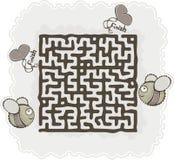 Maze's bee Stock Photos