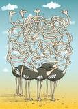 Mazelek för fem Ostriches stock illustrationer