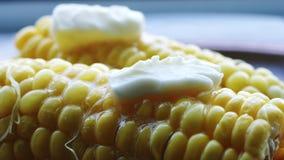 Mazorca caliente del maíz hervido con mantequilla almacen de video
