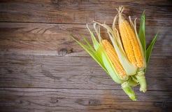 Mazorca de maíz de la visión superior Imagenes de archivo