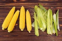 Mazorcas de maíz foto de archivo libre de regalías