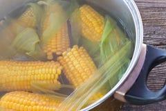 Mazorcas de maíz cocinadas en pote en la tabla de madera imagen de archivo libre de regalías
