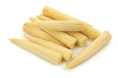 Mazorcas de maíz de bebé Fotos de archivo libres de regalías