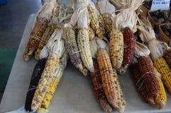 Mazorcas de maíz del maíz en la escena del este de la calle de Detroit Michigan los E.E.U.U. del mercado foto de archivo libre de regalías