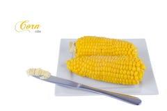 Mazorcas de maíz hervidas Imagen de archivo