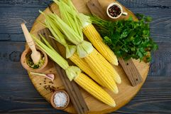 Mazorcas de maíz jovenes con las hojas, especias, hierbas, sal del mar en una bandeja de madera imagen de archivo