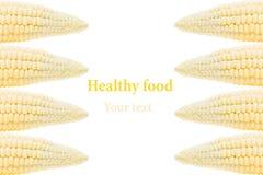 Mazorcas de maíz en un fondo blanco Aislado Marco decorativo Fondo del alimento Foto de archivo libre de regalías