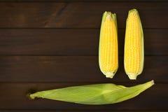 Mazorcas del maíz dulce foto de archivo