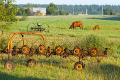 Mazury, Poland. Rural idyll in the Mazury, eastern Poland Stock Images