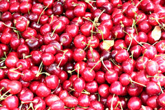 Mazzard cherry. Red sweet cherry a continuous cloth on a horizontal photo Stock Photos