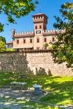 Mazze `-slott i den Piedmont regionen, norr Italien royaltyfri foto