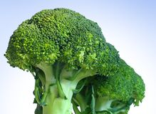 Mazzi del broccolo Fotografia Stock