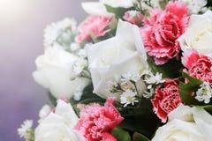 Mazzi del fiore della rosa di bianco Immagini Stock Libere da Diritti
