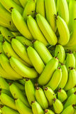 Mazzi di banana verde Fotografia Stock Libera da Diritti