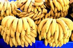 Mazzi di banane mature Fotografia Stock Libera da Diritti
