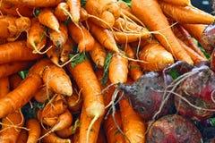 Mazzi di carote Fotografia Stock