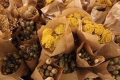 Mazzi di piante medicinali avvolte in carta Fotografia Stock Libera da Diritti