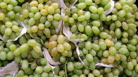 Mazzi di uva verde Fotografie Stock Libere da Diritti
