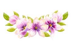 Mazzi floreali di boho dell'acquerello Struttura naturale della Boemia acquerella: foglie, fiori, isolati su fondo bianco illustrazione di stock