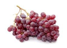 Mazzi o uva porpora Fotografia Stock Libera da Diritti