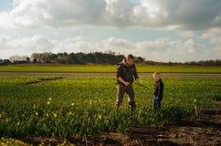 Mazzi obbligatori del figlio e del padre di narcisses sui giacimenti di fiore Immagine Stock Libera da Diritti