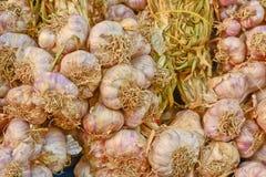 Mazzi porpora bianchi asciutti dell'aglio per vendere Immagini Stock Libere da Diritti