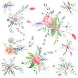 Mazzi romantici dell'acquerello di estate illustrazione vettoriale