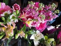 Mazzi variopinti attraenti freschi dei fiori su esposizione Immagine Stock Libera da Diritti