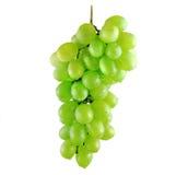 Mazzo bagnato dell'uva fotografia stock
