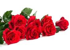 Mazzo bello delle rose rosse immagine stock