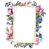 Mazzo botanico floreale del fiore di rosa Insieme dell'illustrazione del fondo dell'acquerello Quadrato dell'ornamento del confin illustrazione vettoriale