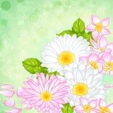 Mazzo con differenti fiori Immagini Stock Libere da Diritti