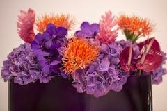 Mazzo con i fiori esotici Fotografie Stock