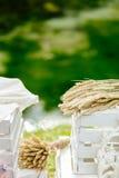 Mazzo con le spighette della fine del grano su con le scatole bianche Fotografie Stock Libere da Diritti