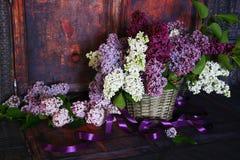 Mazzo d'annata dei fiori del lillà di estate Fotografia Stock