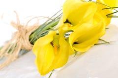 Mazzo da cinque gigli di calla gialli Immagini Stock Libere da Diritti