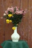 Mazzo dai crisantemi. Immagine Stock