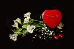 Mazzo dai fiori bianchi con la scatola rossa del cuore Immagine Stock