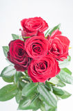 Mazzo dalle rose rosse Fotografia Stock