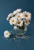 Mazzo dei crisantemi Fotografia Stock Libera da Diritti