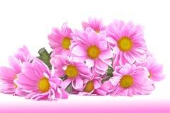 Mazzo dei crisantemi. fotografie stock libere da diritti