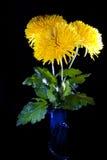 Mazzo dei crisantemi Immagini Stock