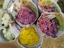 Mazzo dei crisantemi Immagine Stock Libera da Diritti