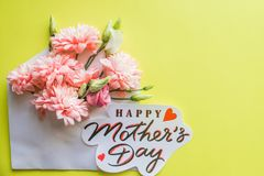 Mazzo dei crisantemi rosa su fondo giallo Fiori dentellare del crisantemo Colori pastelli di Candy della madre di giorno felice d immagine stock
