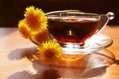 Mazzo dei denti di leone e della tazza di tè Immagini Stock