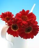 Mazzo dei fiori Fotografie Stock Libere da Diritti