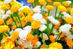 Mazzo dei fiori artificiali Immagine Stock